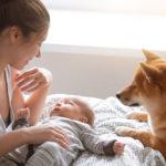 Capitolo 10 – Animali in casa