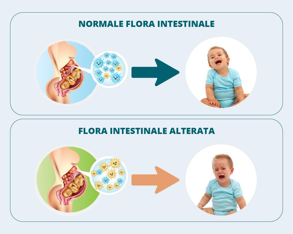 Latte materno e immunità del neonato
